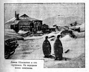 Домик Шекльтона и его спутников. На переднем плане пингвины.